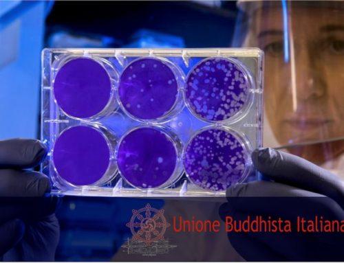 CORONA VIRUS: DALL' UNIONE BUDDHISTA ITALIANA 3 MILIONI DI EURO