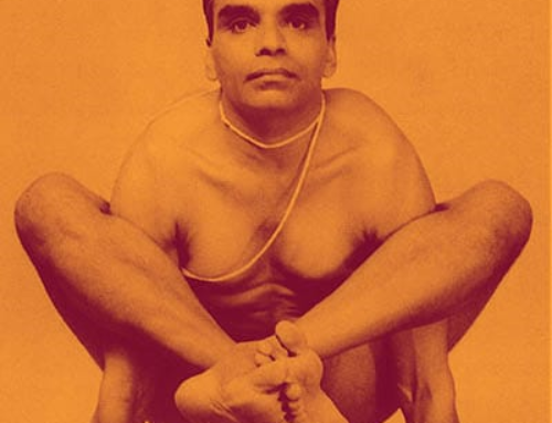 YOGA IYENGAR -ON LINE