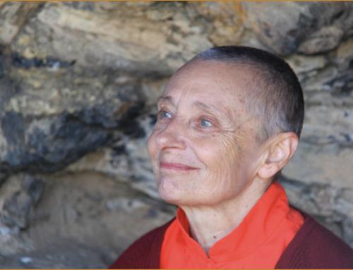 BIBLIODHARMA IN TOUR- ON LINE- Yogini erranti – La tenacia di Tenzin Palmo